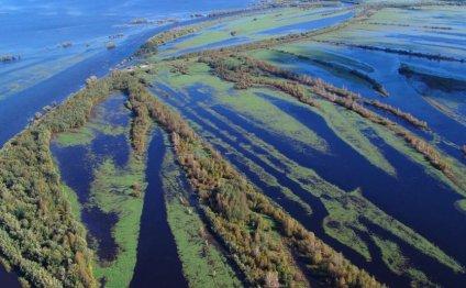 Разлив реки Обь