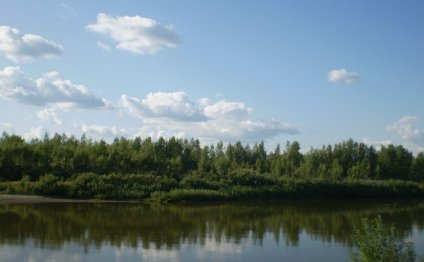 Россия ландшафты река Чумыш